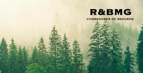 R&BMG – Contratación de Pólizas a medida